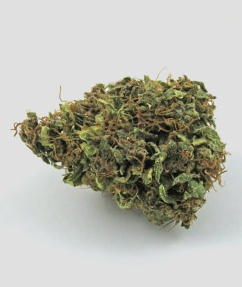 ORANGE BUD CBD < 20%ORANGE BUD CBD < 20%