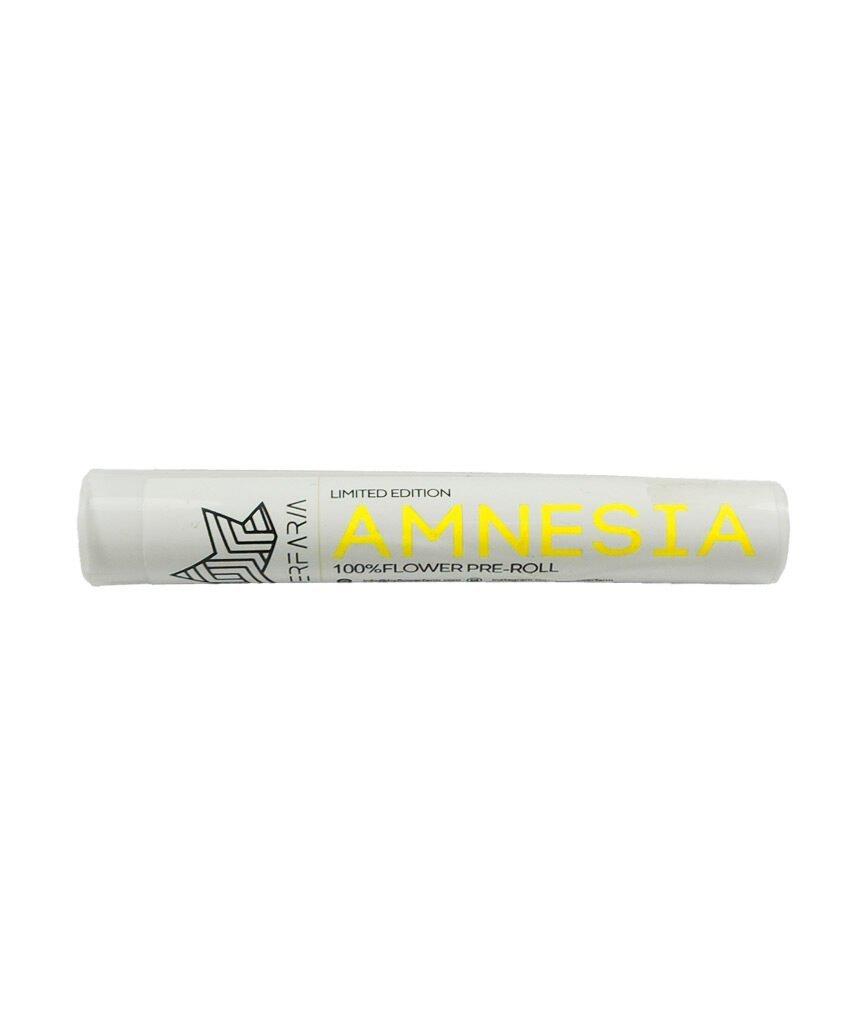 preroll amnesia