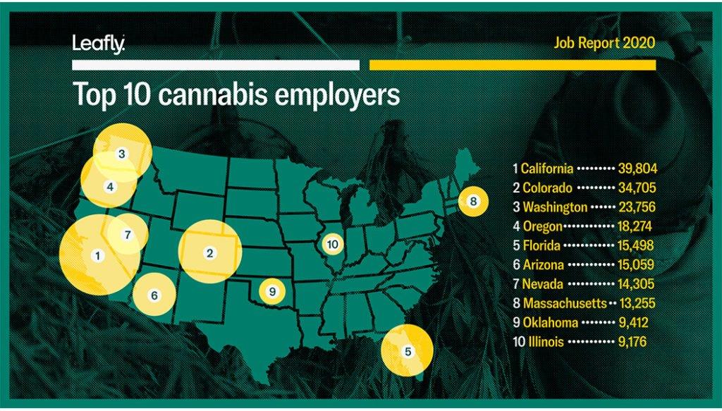 Cannabis e lavoro negli Stati Uniti