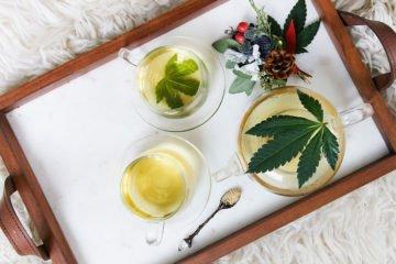 Alcune ragioni per per bere té alla Cannabis