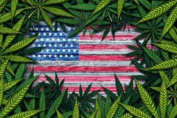 Referendum Usa altri 5 stati hanno legalizzato la cannabis