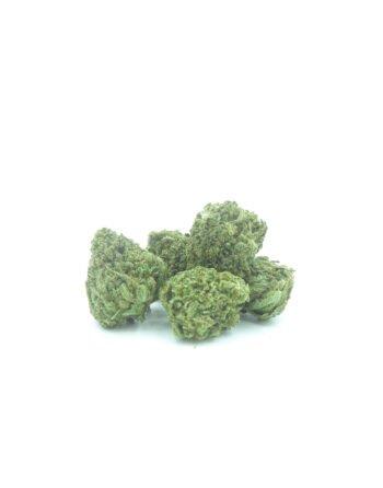 Popcorn bud Amnesia cannabis light by flowerfarm