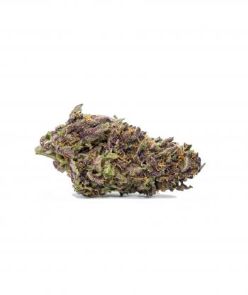 flower farm purple